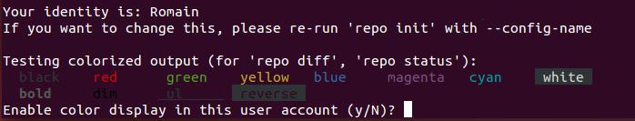 Vous devez renseigner votre nom et votre adresse email pour pouvoir créer une copie locale du projet open source avec Repo